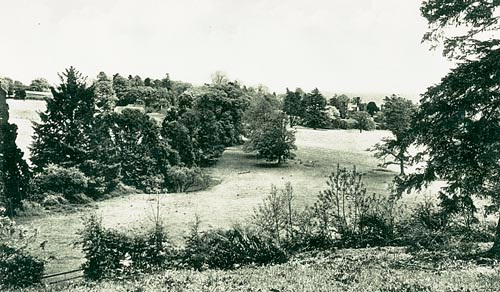 Tippers Hill c.1910