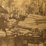 Tom Shepherd & Cecil Challen at Morley's chestnut fencing fencing mill